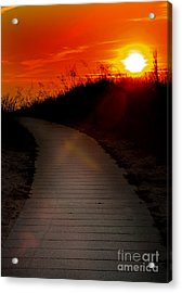 Sunset Path Acrylic Print by Randall  Cogle