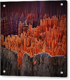 Sunset Point Bryce Canyon Utah Acrylic Print by Gary Warnimont