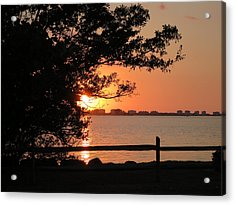 Sunset On Sarasota Harbor Acrylic Print