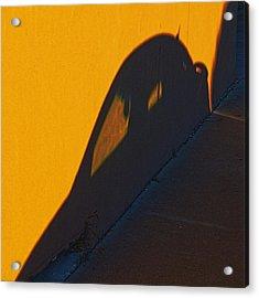 Acrylic Print featuring the photograph Sunset Shadow Car by John Hansen