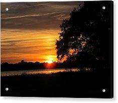 Sunset Shadowed Oak Acrylic Print by Joetta Beauford