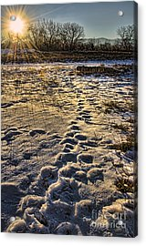 Sunset Shadows Acrylic Print by Baywest Imaging