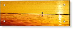 Acrylic Print featuring the photograph Sunset Silhouette by Darryl Dalton