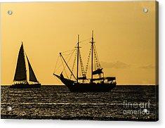 Sunset Silhouette Acrylic Print by Judy Wolinsky