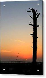 Sunset Silhouette Acrylic Print by Saya Studios