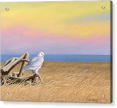 Sunset Snowy Owl Acrylic Print by Kirsten Wahlquist