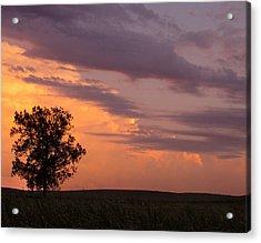 Sunset Sorbet II Acrylic Print