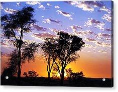 Sunset Splendour Acrylic Print by Liudmila Di
