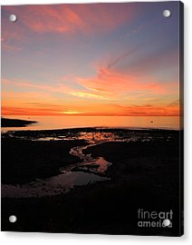 Field River, Hallett Cove Acrylic Print