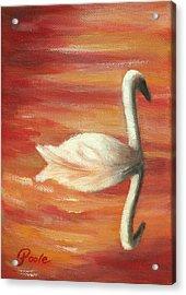 Sunset Swan Acrylic Print
