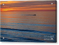 Acrylic Print featuring the photograph Sunset Swimmer by Maria Janicki
