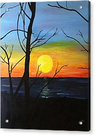 Sunset Through The Branches Acrylic Print
