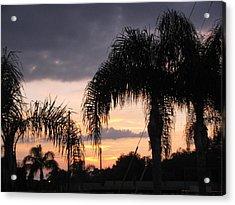 Sunset Through The Palms Acrylic Print