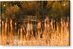 Sunset Tranquility Acrylic Print by Valerie Pond
