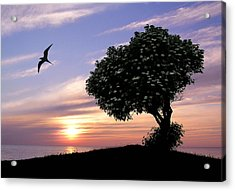 Sunset Tree Of Tranquility Acrylic Print