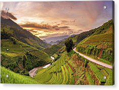Sunset View Point Of Rice Terrace Acrylic Print by Suttipong Sutiratanachai