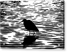 Sunset With A Wading Bird Silhouette Acrylic Print by Ben and Raisa Gertsberg