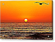 Sunset With Seagull Acrylic Print by Sharon Soberon