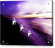 Sunset Worshippers Acrylic Print