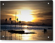 Sunset Acrylic Print by Zestgolf