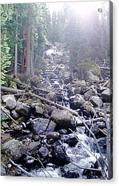 Sunshine On Brook Acrylic Print