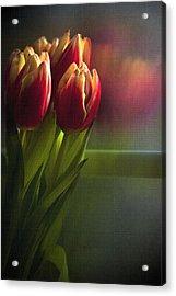 Sunshine On My Window Acrylic Print by Cindy Rubin