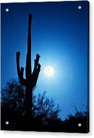 Super Full Moon With Saguaro Cactus In Phoenix Arizona Acrylic Print