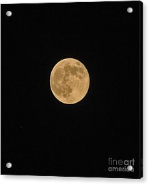 Super Moon 8 10 14 Acrylic Print by Jay Milo