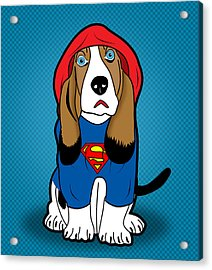 Superman Dog  Acrylic Print by Mark Ashkenazi