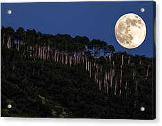 Supermoon Over Moon Hill Acrylic Print by John McArthur