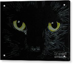Superstitious Eyes Acrylic Print by Nancie Johnson