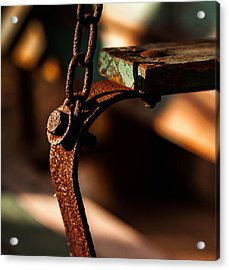 Acrylic Print featuring the photograph Support by Haren Images- Kriss Haren