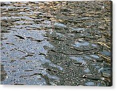 Surface Glide Acrylic Print by David Flitman
