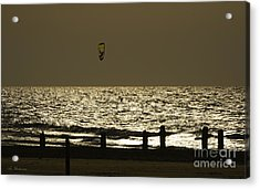 Surfing At Sunset Acrylic Print by Arik Baltinester