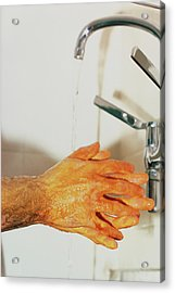 Surgeon Scrubbing Up Acrylic Print by Andrew Mcclenaghan/science Photo Library