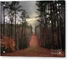 Surreal Autumn Fall South Carolina Tree Landscape Acrylic Print