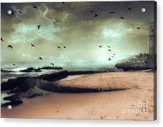 Surreal Dreamy Ocean Beach Birds Sky Nature Acrylic Print by Kathy Fornal