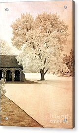Surreal Ethereal Infrared Sepia Nature Landscape Acrylic Print by Kathy Fornal