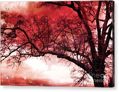 Surreal Fantasy Gothic Red Tree Landscape Acrylic Print by Kathy Fornal