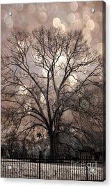 Surreal Fantasy Gothic South Carolina Sepia Oak Trees And Fantasy Bokeh Circles Acrylic Print by Kathy Fornal