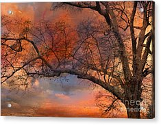 Surreal Fantasy Orange Sunset Trees Ethereal Landscape Acrylic Print