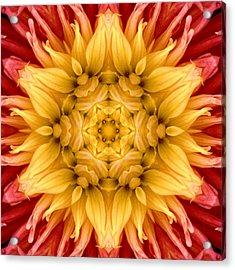 Surreal Flower No.4 Acrylic Print
