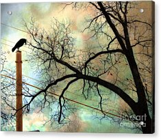 Surreal Gothic Crow Ravens Birds Fantasy Nature  Acrylic Print by Kathy Fornal