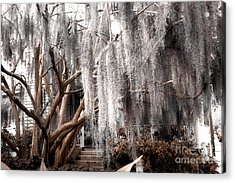 Surreal Gothic Savannah House Spanish Moss Hanging Trees - Savannah Sepia Brown Moss Trees Acrylic Print by Kathy Fornal