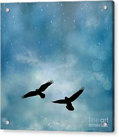 Surreal Ravens Crows Flying Blue Sky Stars Acrylic Print by Kathy Fornal