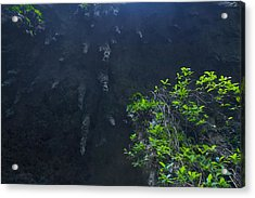 Surreal Stalactites At The Camuy Caverns Acrylic Print by Sandra Pena de Ortiz