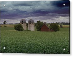 Surrounded By Fields Acrylic Print by Rebecca Davis