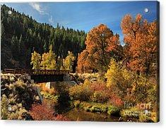 Susan River Bridge On The Bizz 2 Acrylic Print