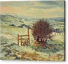 Sussex Stile, Winter, 1996 Acrylic Print by Robert Tyndall