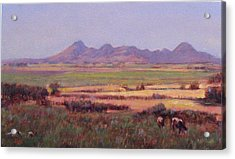 Sutter Buttes In Summer Afternoon Acrylic Print by Takayuki Harada